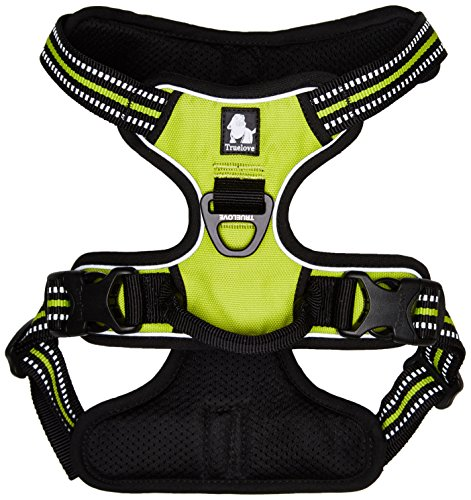 Chai's Choice Pet Products Best Front Range No-Pull Dog Harness, Medium, Green