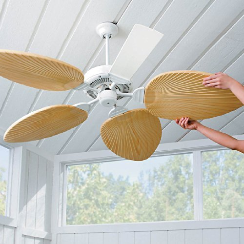 Palm-Leaf Ceiling Fan Blades-Set of 5 - Ivory by (Leaf Fan Blades)