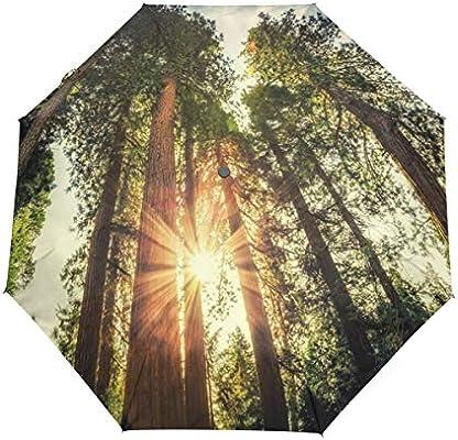 XiangHeFu Paraguas Sunshine Estilo Europeo Bosque Auto Abierto ...