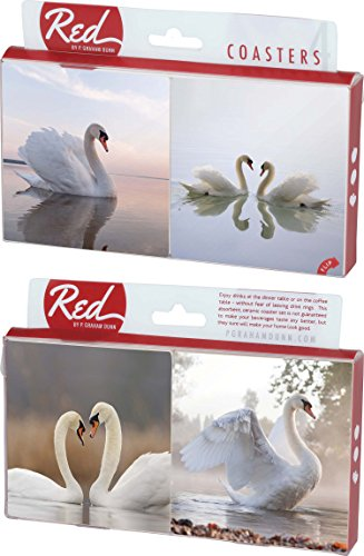 (Swans in Love 4 Piece Absorbent Ceramic Coaster)