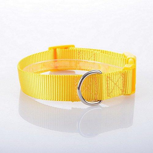 adjustable nylon pet dog collar
