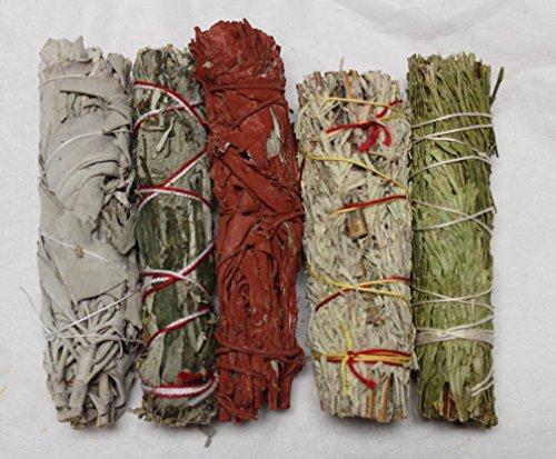 (Rainbowrecords239 Set of 5 Sage Smudge Stick SAMPLER: White Black Blue Cedar Dragons Blood)