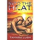 Into the Heat (Burning Secrets) (Volume 2)