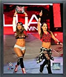 Bella Twins WWE 2015 Action Photo (Size: 17'' x 21'') Framed