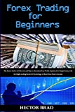Forex Trading for Beginners: The Basics Guide with