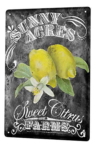 Tin Sign Metal Decorative Sign Home Decor Plaques Kitchen Lemon