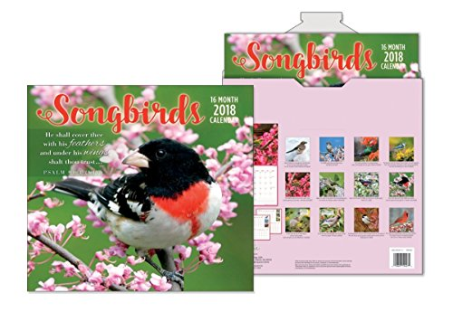Top 2019 Songbirds Premium Wall Calendar (16 Months) for sale