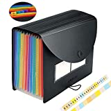Expanding File Folder Accordian File Organizer with Cover/Portable A4 Letter Size Filing Box, Accordion Bill Paper Document Receipt Organizer High Capacity Plastic Bag with Colored Tab