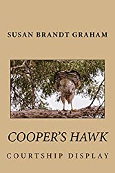 Cooper's Hawk Courtship Display (As Seen in New Mexico... Book 1)