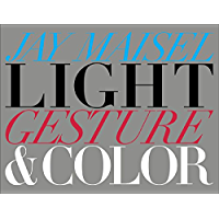 Light, Gesture, and Color (Voices That Matter) book cover