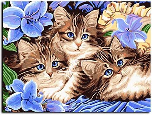 Sin marco Gatos cuadros pintura por números DIY pintura al óleo sobre lienzo decoración para el hogar para sala de estar 40x50cm: Amazon.es: Hogar