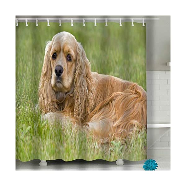 "YILINGER Home Decor Shower Curtain 60""x72"" Fabric American Cocker Spaniel Cooker Female Resting Grass Portrait 1"