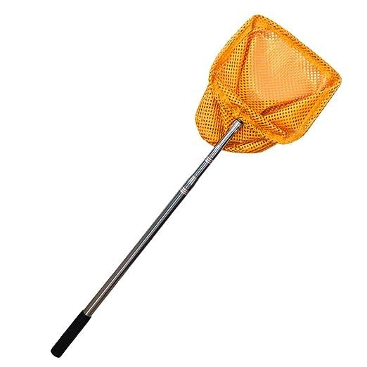 ZXLIFE@@ Red De Recogida De Pelota De Tenis De Mesa Escalable ...