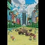 The New Yorker, August 27th 2012 (Jane Meyer, Jon Lee Anderson, James Surowiecki) | Jane Meyer,Jon Lee Anderson,James Surowiecki