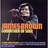 The Godfather of Soul By James Brown (1998-11-01)