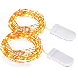 Copper Wire Light, 2 Set of Micro 30 LEDs Super Bright Starry string Light Battery Operated on 9.8 Ft Long Rope Light For Seasonal Decorative Christmas Holiday, Wedding, Party With Battery Box-Warm White Picture