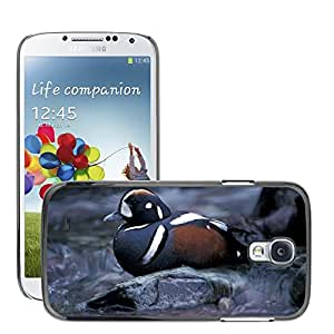 Hot Style Cell Phone PC Hard Case Cover // M00116750 Duck Harlequin Bird Waterfowl // Samsung Galaxy S4 S IV SIV i9500