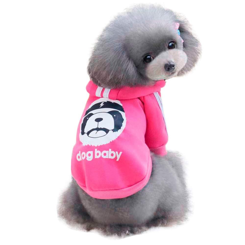 Ropa para Mascotas,Dragon868 Moda Gruesa Caliente Invierno suéteres de Lana para Perros de Mascota Unisex: Amazon.es: Ropa y accesorios