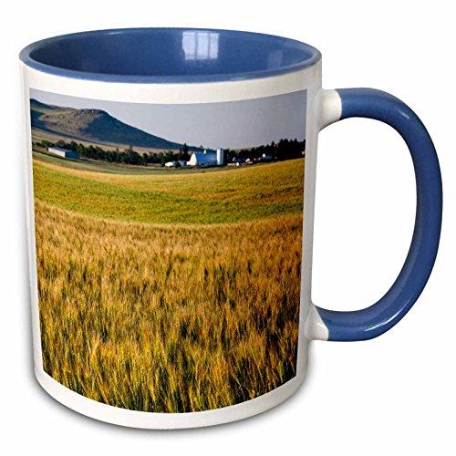 3dRose Danita Delimont - Agriculture - Wheat agriculture, Regent, North Dakota, USA - US35 CHA0349 - Chuck Haney - 15oz Two-Tone Blue Mug (mug_145637_11)