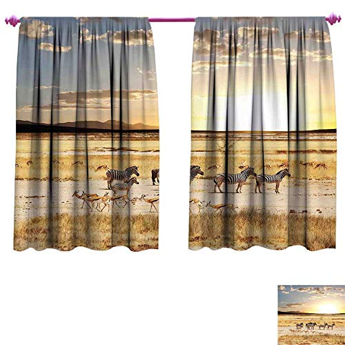 - WinfreyDecor Safari Thermal Insulating Blackout Curtain Zebras with Their Striped Coats in Savannahs Sunset Adventure Africa Wild Safari Blackout Draperies for Bedroom W55 x L39 Cream Golden