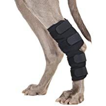 Back on Track 7-Inch Length by 6-Inch Top Width by 4.7-Inch Bottom Width Therapeutic Dog Rear Leg/Hock Brace with 4 Adjustable Velcro Straps, Small