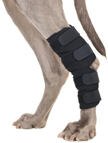 Back-on-Track-Therapeutic-Dog-Rear-LegHock-Brace-Pair-Small-725-Inch-Length-4-to-625-Inches-Top-Width-3-to-475-Inches-Bottom-Width-with-4-Adjustable-Velcro-Straps