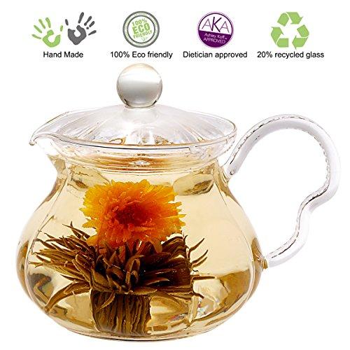 Tea Beyond GTP2005 Heat Resistant Glass Teapot Fairy, 20-Ounce