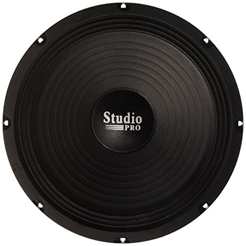 Pyramid WH10 10-Inch 300 Watt High Power Paper Cone 8 Ohm Subwoofer by Pyramid