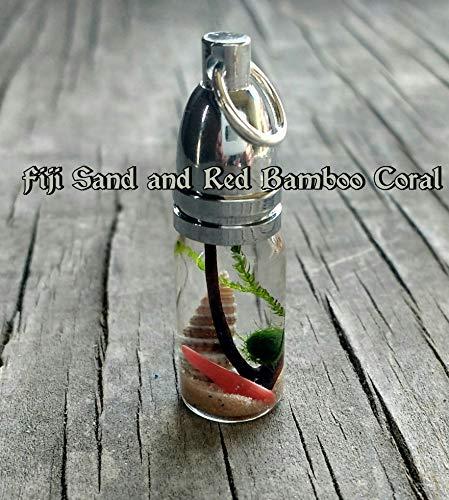 Bullet Beach Terrarium Pendant - Marimo and Java Moss - Live Plant Jewelry - CUSTOM - FREE ECONOMY SHIPPING