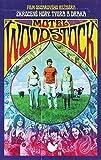 Motel Woodstock (Taking Woodstock)