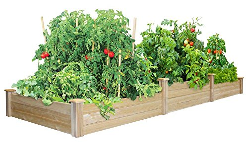Greenes Fence Tall Tiers Dovetail Raised Garden Bed by Greenes Fence