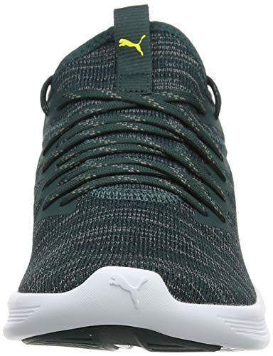 Pine Running Ignite Puma Flash blazing Homme De Black Yellow ponderosa Evoknit Chaussures Vert puma xzRFwRCpq