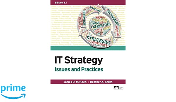 Practices pdf and strategy 2nd issues it edition