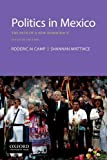 img - for Politics in Mexico: The Path of a New Democracy book / textbook / text book
