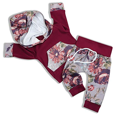 - Infant Toddler Baby Girl Sweatshirt Floral Hoodie Outfits Tops +Pants Clothes Set (Red, 0-6 Months)