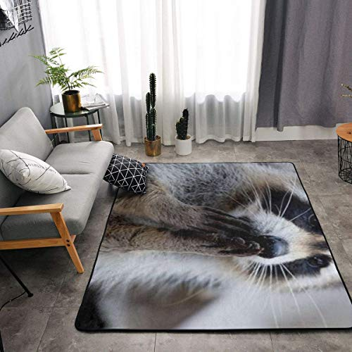 YOUNG H0ME Cute Raccoon Kitchen Rugs Memory Foam Floor Pad Rugs with Anti-Slip Rubber Backing, Fast Dry Bath Mat Nursery Rugs Home Decor Comfort Shaggy Rugs - 63 x 48 Inch