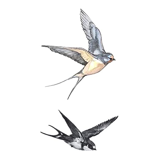 IMHERE W U Fly tragos de los pájaros del diseño del Arte del ...