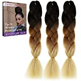 Emmet Jumbo Braids Premium Quality 100% Kanekalon Braiding Hair Extension Ombre 24Inch Heat Resistant, Long Time Using 37 Colors 2 Tone & 3 Tone 3Pcs/lot, with Free Ebook (Ombre Color 19)