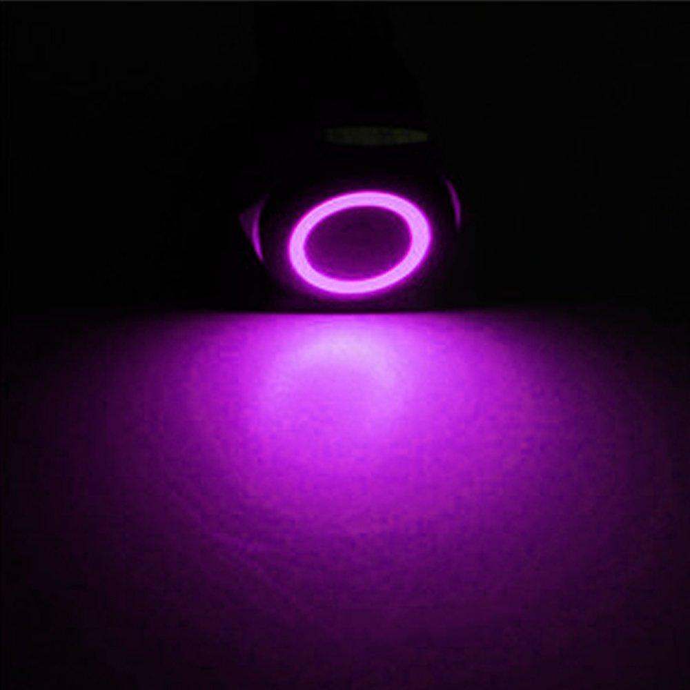 E Support/™ KFZ Auto Boot Kippschalter Druckschalter Schalter Drucktaster Druckknopf 19mm 12V 5A Blau LED Licht Metall