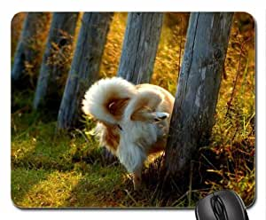 CALL of NATURE Cute Cool Decorative Design Animal Dog Mousepad