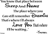 Tinkerbell Wall Decals-You know that place between sleep and awake The place where you can still remember dreaming That's where I'll always love you That's where I'll be waiting- Wall Quotes- Disney Wall Sayings