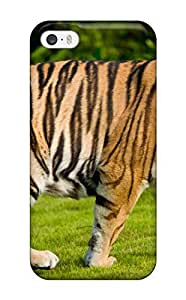 Hard Plastic Iphone 5/5s Case Back Cover,hot Hd Tiger Case At Perfect Diy