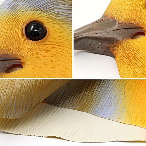 PartyCostume Deluxe Innovante Toussaint Costume Réunion Botanique Animalia Tête Masque Robin