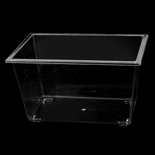 Amazon.com : eDealMax Forma plástico Rectangular acuario Betta Fish Tank Alimento de Mascota Caja : Pet Supplies