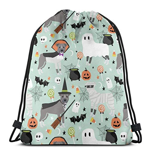 Pitbull Halloween Costume Dog Vampire Ghost Mummy Light_17411 Custom Drawstring Shoulder Bags Gym Bag Travel Backpack Lightweight Gym for Man Women 16.9