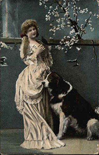 Girl in Victorian Dress with Bird & Large Dog Multiple Animals Original Vintage Postcard from CardCow Vintage Postcards
