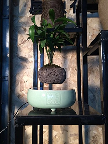 Japanese style Levitating Air Bonsai Pot - Magnetic Levitation Suspension flower (Green)