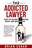 img - for The Addicted Lawyer: Tales of the Bar, Booze, Blow, and Redemption book / textbook / text book