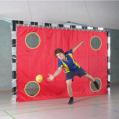 Sport-Thieme® Hallenhandball Torwandnetz, Mit 4 Löchern