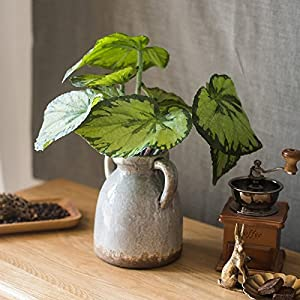 Gentille G Home Collection Rustic Artificial Begonia Leaf 5